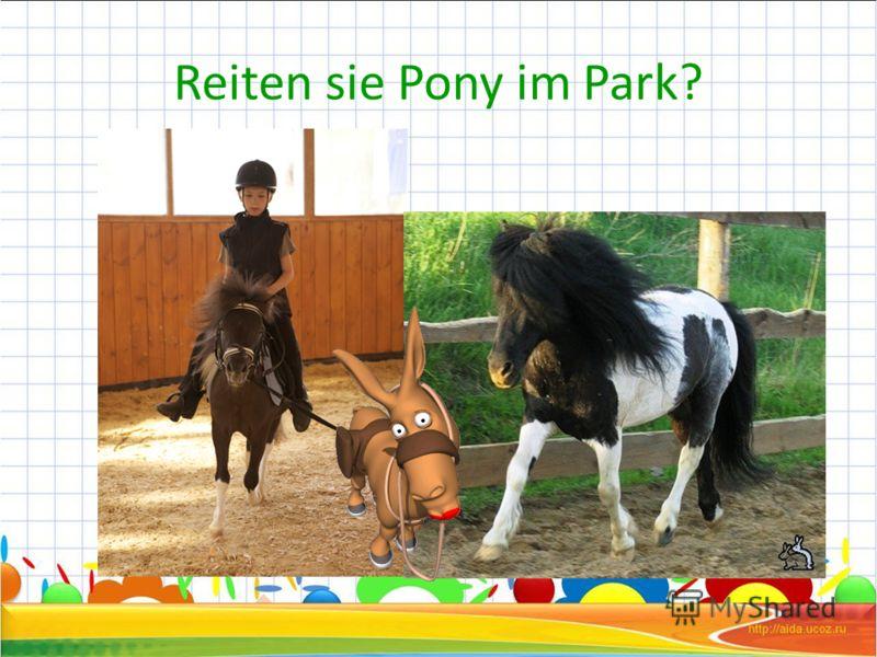 Reiten sie Pony im Park?