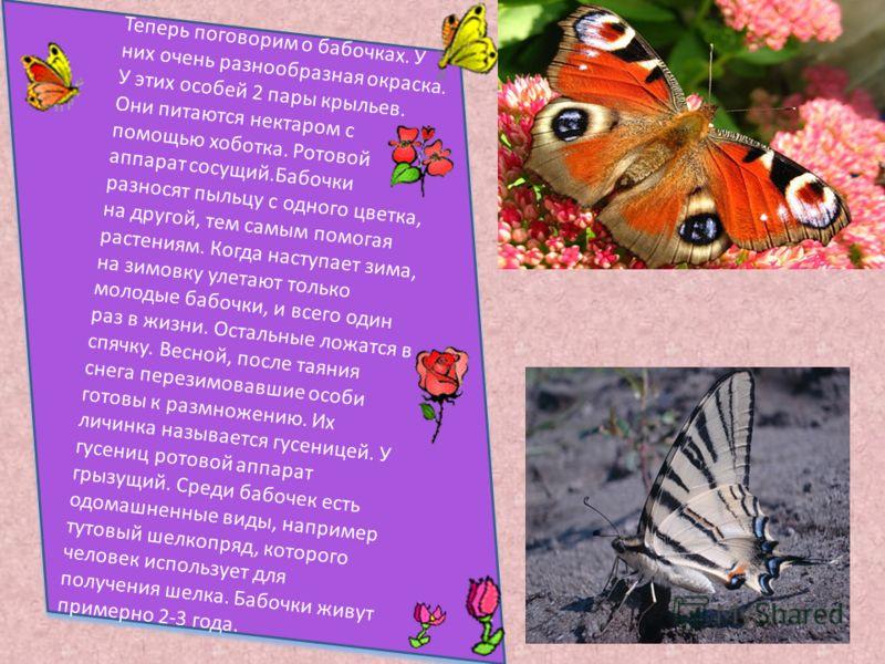 Теперь поговорим о бабочках. У них очень разнообразная окраска. У этих особей 2 пары крыльев. Они питаются нектаром с помощью хоботка. Ротовой аппарат сосущий.Бабочки разносят пыльцу с одного цветка, на другой, тем самым помогая растениям. Когда наст
