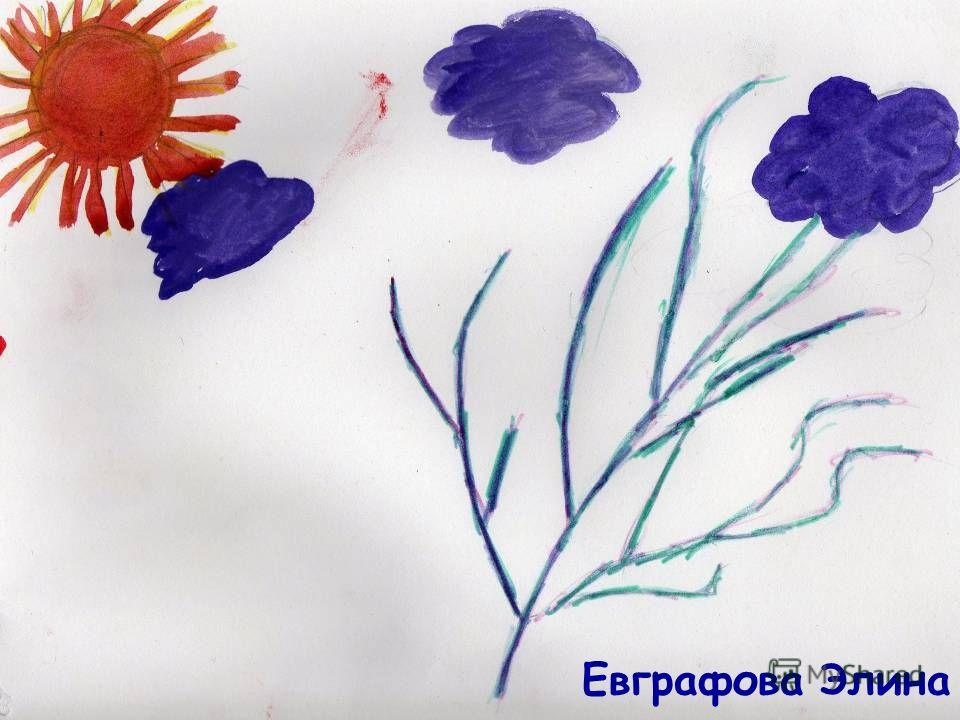 Евграфова Элина