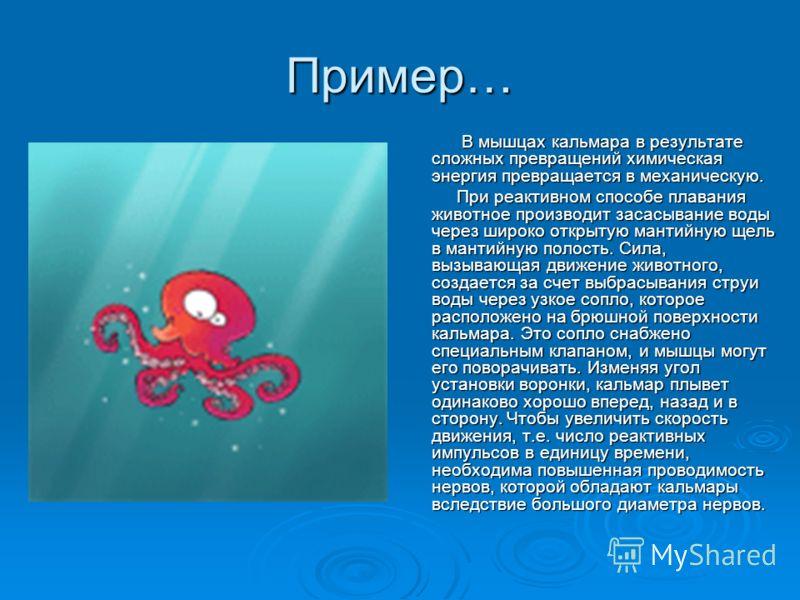 Пример… В мышцах кальмара в результате сложных превращений химическая энергия превращается в механическую. В мышцах кальмара в результате сложных превращений химическая энергия превращается в механическую. При реактивном способе плавания животное про