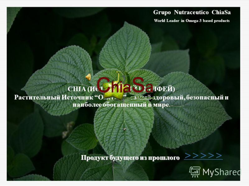 CHIA (ИСПАНСКИЙ ШАЛФЕЙ) Растительный Источник Омега 3- самый здоровый, безопасный и наиболее обогащенный в мире. Grupo Nutraceutico ChiaSa World Leader in Omega-3 based products Продукт будущего из прошлого >>>>>