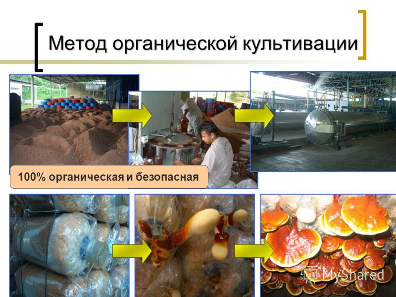 17 Метод органической культивации Метод органической культивации 100% органическая и безопасная