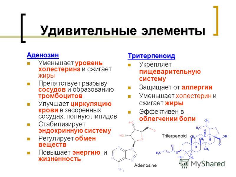 9 Удивительные элементы Удивительные элементы Аденозин Уменьшает уровень холестерина и сжигает жиры Препятствует разрыву сосудов и образованию тромбоцитов Улучшает циркуляцию крови в засоренных сосудах, полную липидов Стабилизирует эндокринную систем