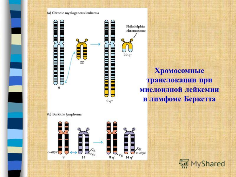 Роль наследственности Ксеродерма – аутосмно-рецессивный ген Ретинобластома –аутосомно-доминантный Есть так называемые раковые семьи Предрасположенность не к раку вообще, а раку определенных органов Это обусловлено структурно- функциональными особенно