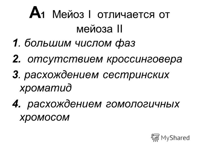 А 1 Мейоз I отличается от мейоза II 1. большим числом фаз 2. отсутствием кроссинговера 3. расхождением сестринских хроматид 4. расхождением гомологичных хромосом
