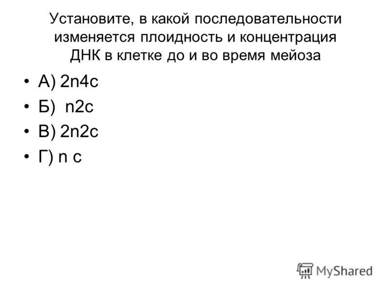 Установите, в какой последовательности изменяется плоидность и концентрация ДНК в клетке до и во время мейоза А) 2n4c Б) n2c В) 2n2c Г) n c