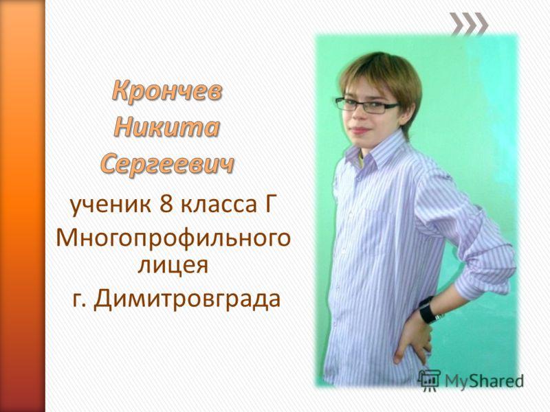 ученик 8 класса Г Многопрофильного лицея г. Димитровграда