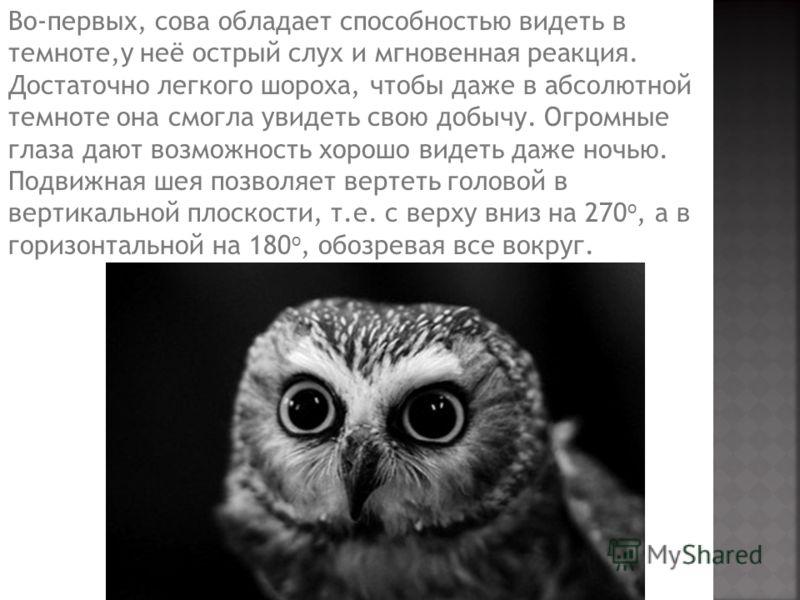 Во-первых, сова обладает способностью видеть в темноте,у неё острый слух и мгновенная реакция. Достаточно легкого шороха, чтобы даже в абсолютной темноте она смогла увидеть свою добычу. Огромные глаза дают возможность хорошо видеть даже ночью. Подвиж