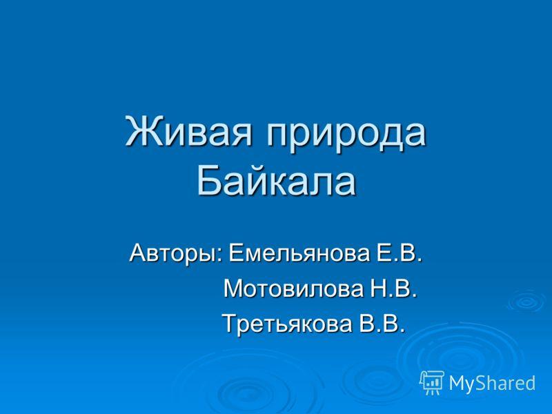 Живая природа Байкала Авторы: Емельянова Е.В. Мотовилова Н.В. Мотовилова Н.В. Третьякова В.В. Третьякова В.В.