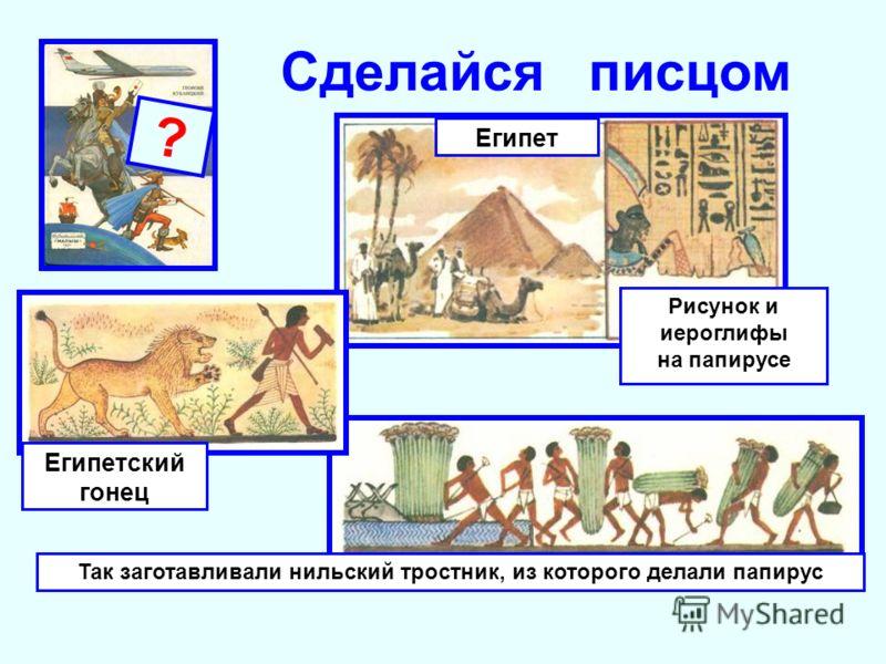 Рисунок и иероглифы на папирусе ? Сделайся писцом Египет Так заготавливали нильский тростник, из которого делали папирус Египетский гонец