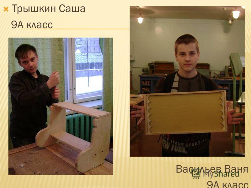 Трышкин Саша 9А класс Васильев Ваня 9А класс