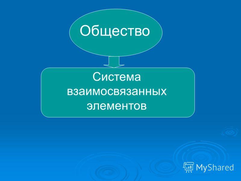 Общество Система взаимосвязанных элементов