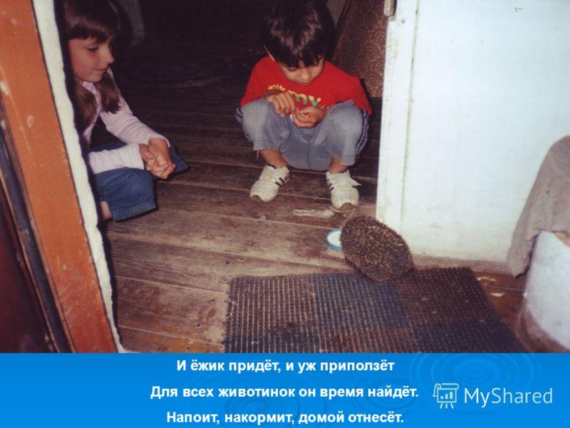 И ёжик придёт, и уж приползёт Для всех животинок он время найдёт. Напоит, накормит, домой отнесёт.