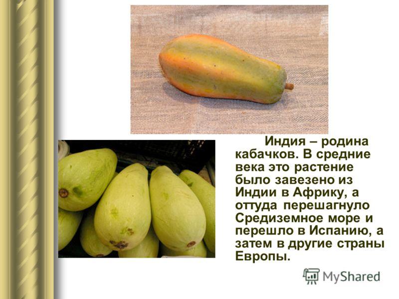 Индия – родина кабачков. В средние века это растение было завезено из Индии в Африку, а оттуда перешагнуло Средиземное море и перешло в Испанию, а затем в другие страны Европы.