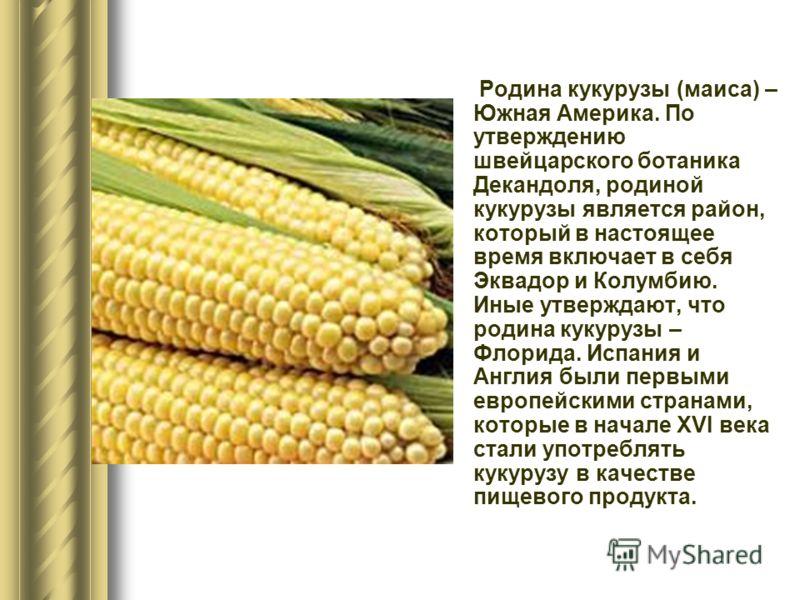 Родина кукурузы (маиса) – Южная Америка. По утверждению швейцарского ботаника Декандоля, родиной кукурузы является район, который в настоящее время включает в себя Эквадор и Колумбию. Иные утверждают, что родина кукурузы – Флорида. Испания и Англия б
