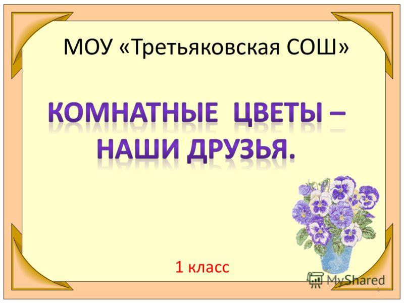 МОУ «Третьяковская СОШ» 1 класс 1