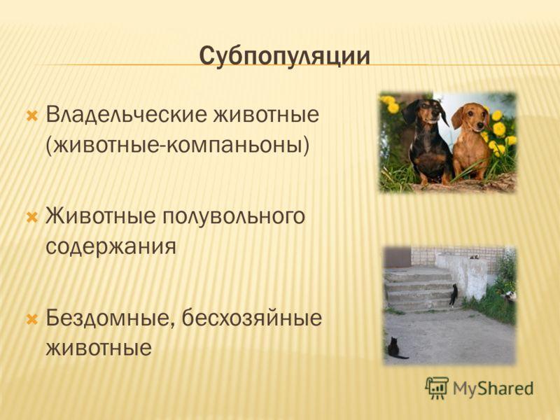 Субпопуляции Владельческие животные (животные-компаньоны) Животные полувольного содержания Бездомные, бесхозяйные животные