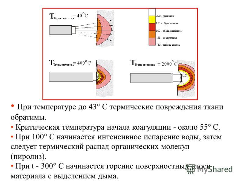 При температуре до 43° С термические повреждения ткани обратимы. Критическая температура начала коагуляции - около 55° С. При 100° С начинается интенсивное испарение воды, затем следует термический распад органических молекул (пиролиз). При t - 300°