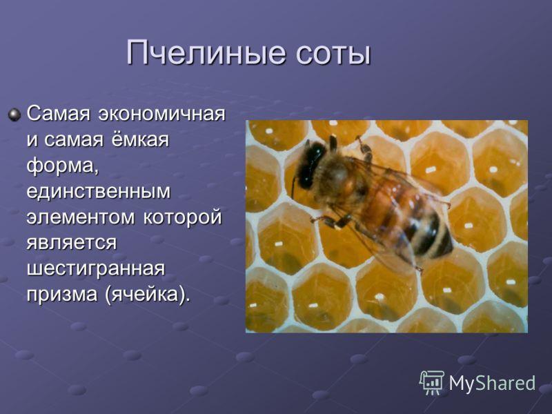 Пчелиные соты Самая экономичная и самая ёмкая форма, единственным элементом которой является шестигранная призма (ячейка).
