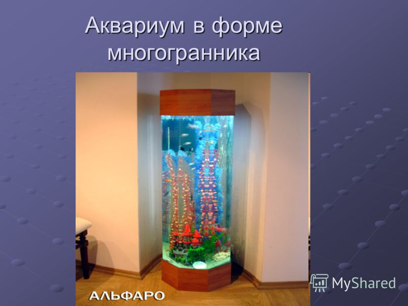 Аквариум в форме многогранника