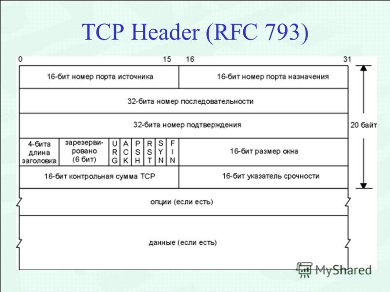 TCP Header (RFC 793)