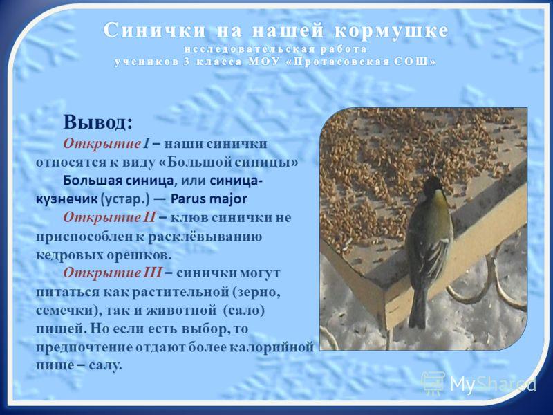 Вывод: Открытие I – наши синички относятся к виду « Большой синицы » Большая синица, или синица- кузнечик (устар.) Parus major Открытие II – клюв синички не приспособлен к расклёвыванию кедровых орешков. Открытие III – синички могут питаться как раст