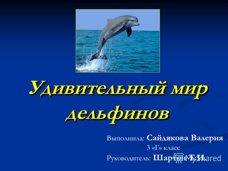 Удивительный мир дельфинов Выполнила: Сайдякова Валерия 3 «Г» класс Руководитель: Шартон Т.И.