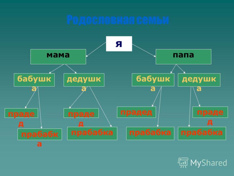 Родословная семьи я мамапапа бабушк а дедушк а бабушк а дедушк а праде д прабабк а праде д прабабка праде д прабабка