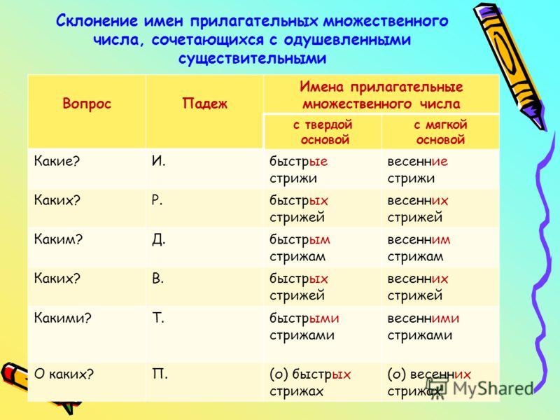 урок русского языка 6 класс склонение существительных