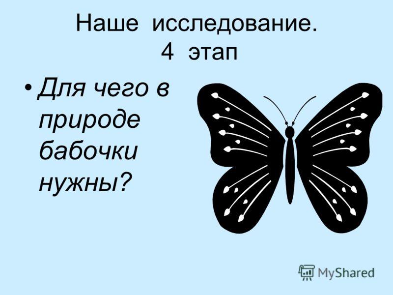 Наше исследование. 4 этап Для чего в природе бабочки нужны?