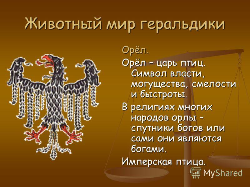 Животный мир геральдики Орёл. Орёл – царь птиц. Символ власти, могущества, смелости и быстроты. В религиях многих народов орлы – спутники богов или сами они являются богами. Имперская птица.
