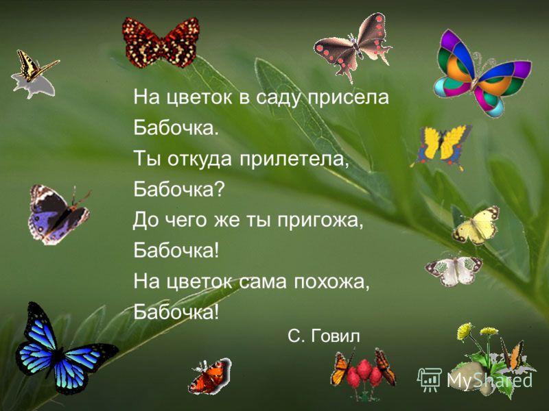 Мир не прост, совсем не прост. Нельзя в нем скрыться от бурь и от гроз. В нем есть деревья, и есть цветы, Есть еще ты, есть еще ты!.. Есть в нем сова и есть соловей. Есть в нем и бабочка, и муравей. И есть медведи, и даже львы, Есть еще ты, есть еще