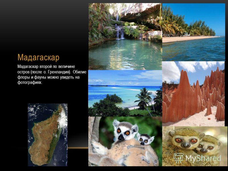 Мадагаскар Мадагаскар второй по величине остров (после о. Гренландия). Обилие флоры и фауны можно увидеть на фотографиях.