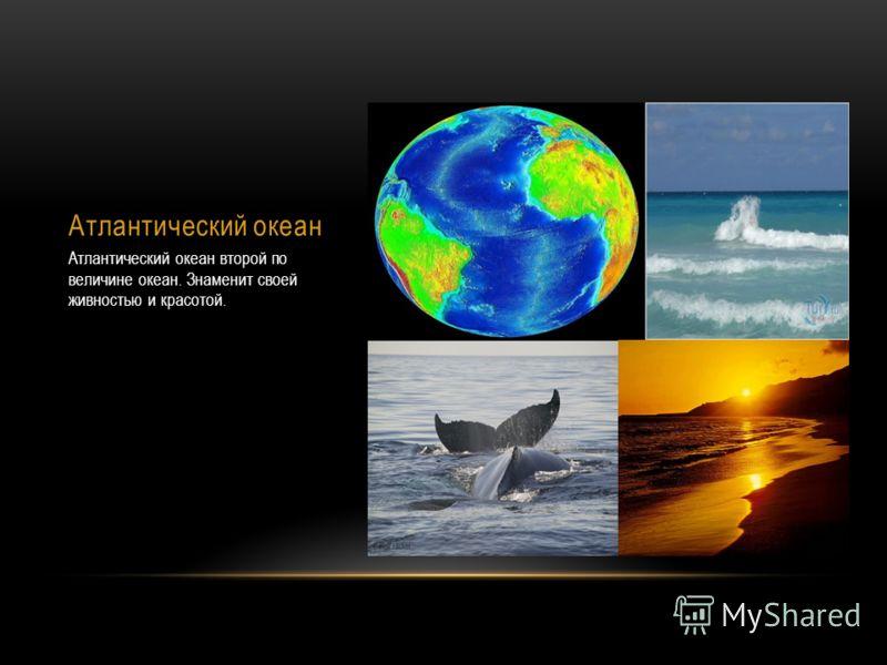 Атлантический океан Атлантический океан второй по величине океан. Знаменит своей живностью и красотой.