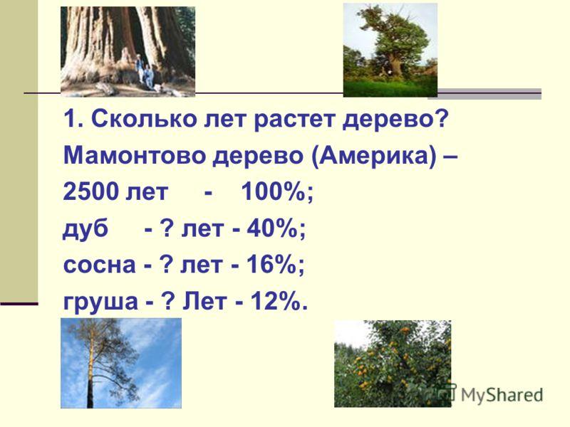 1. Сколько лет растет дерево? Мамонтово дерево (Америка) – 2500 лет - 100%; дуб - ? лет - 40%; сосна - ? лет - 16%; груша - ? Лет - 12%. 1000 лет 400 лет 300 лет