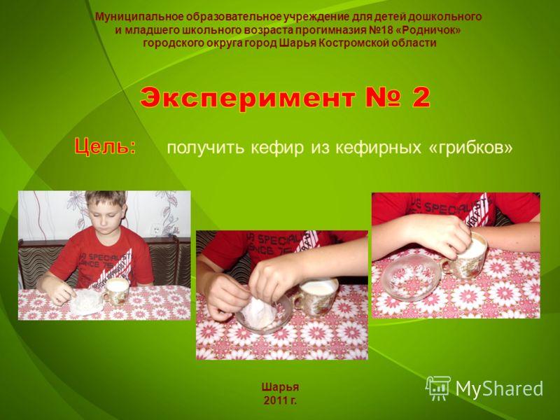 Шарья 2011 г. Муниципальное образовательное учреждение для детей дошкольного и младшего школьного возраста прогимназия 18 «Родничок» городского округа город Шарья Костромской области