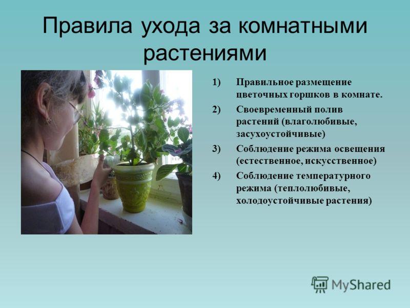 Правила ухода за комнатными растениями 1)Правильное размещение цветочных горшков в комнате. 2)Своевременный полив растений (влаголюбивые, засухоустойчивые) 3)Соблюдение режима освещения (естественное, искусственное) 4)Соблюдение температурного режима