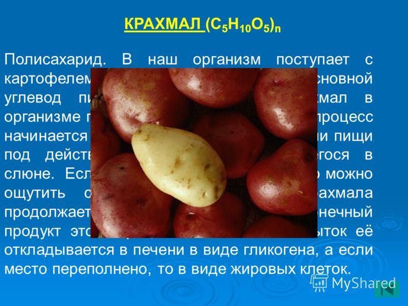 КРАХМАЛ (С 5 Н 10 О 5 ) n Полисахарид. В наш организм поступает с картофелем, зерновыми. Крахмал – основной углевод пищи. Подобно жирам крахмал в организме подвергается гидролизу. Этот процесс начинается уже во рту при пережёвывании пищи под действие