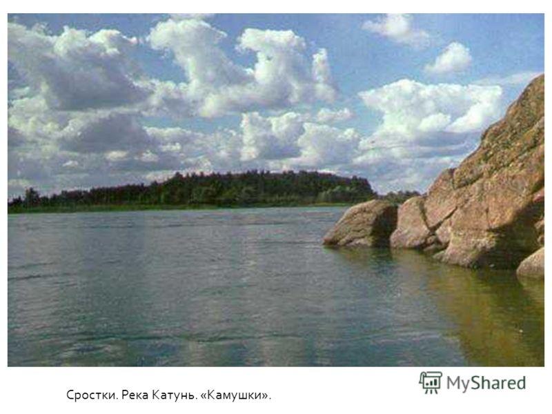 Сростки. Река Катунь. «Камушки».