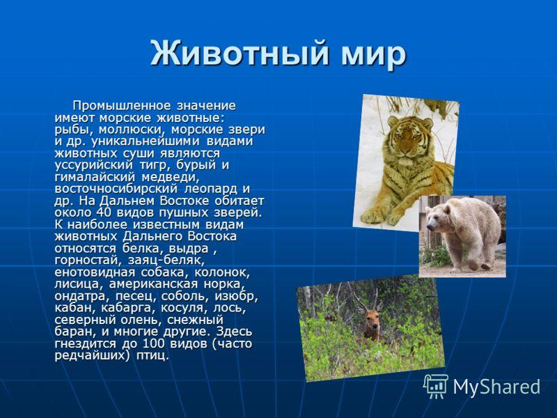 Животный мир Промышленное значение имеют морские животные: рыбы, моллюски, морские звери и др. уникальнейшими видами животных суши являются уссурийский тигр, бурый и гималайский медведи, восточносибирский леопард и др. На Дальнем Востоке обитает окол