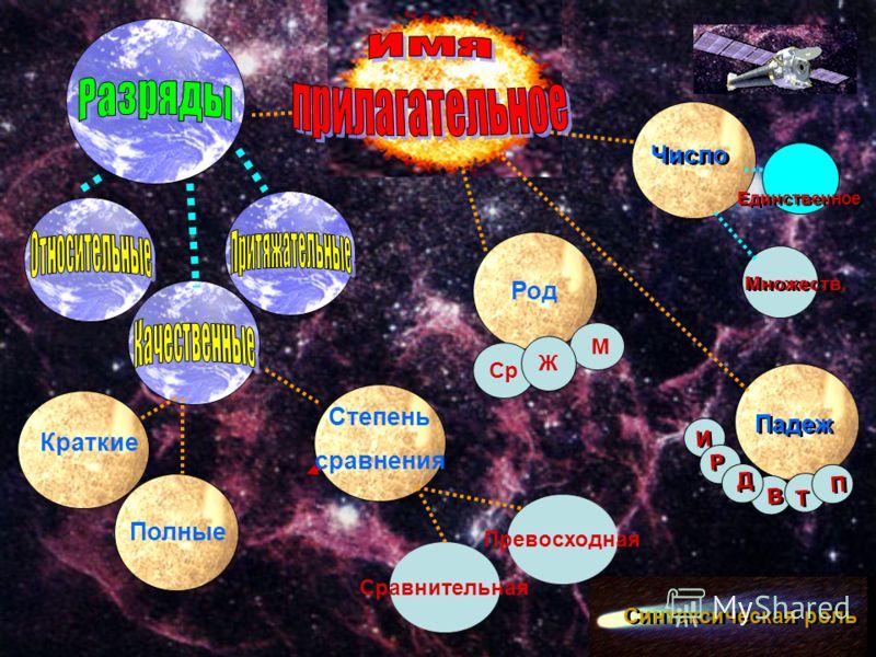 Число Единственное Множеств. Падеж Синтаксическая роль Т Т И И В В Р Р Д Д П П Род Полные Краткие Степень сравнения Сравнительная Превосходная Ср Ж М