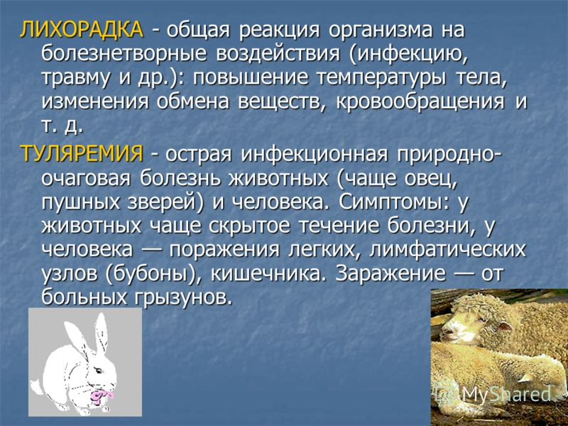 ЛИХОРАДКА - общая реакция организма на болезнетворные воздействия (инфекцию, травму и др.): повышение температуры тела, изменения обмена веществ, кровообращения и т. д. ТУЛЯРЕМИЯ - острая инфекционная природно- очаговая болезнь животных (чаще овец, п