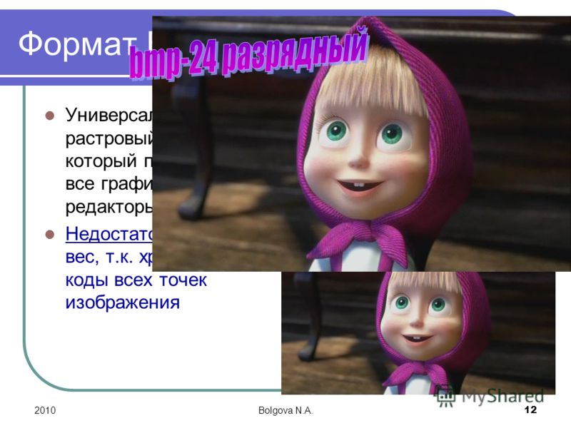 2010Bolgova N.A. 12 Формат BMP Универсальный растровый формат, который понимают все графические редакторы. Недостаток- большой вес, т.к. хранятся коды всех точек изображения