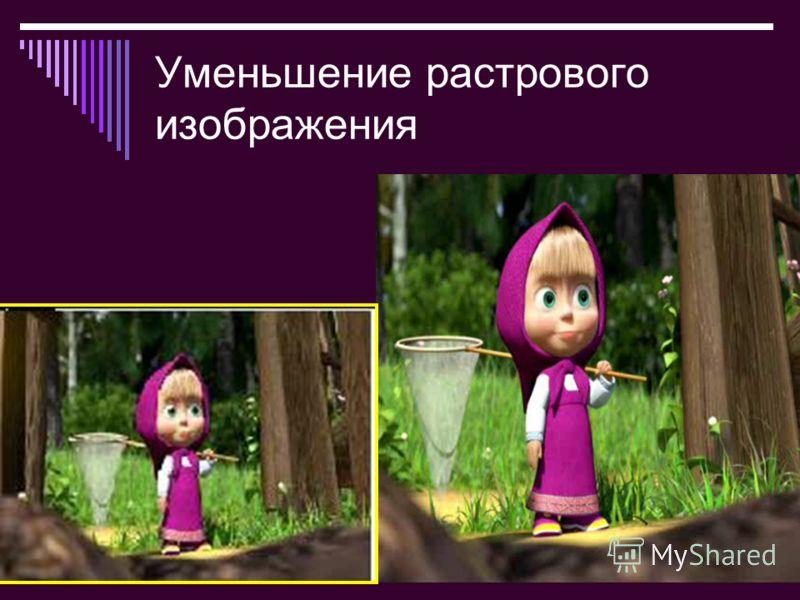 Bolgova N.A.7 2010 Уменьшение растрового изображения