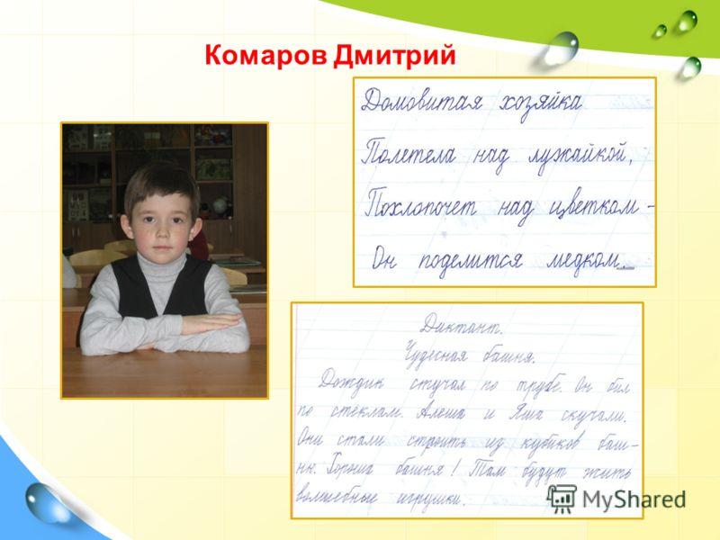 Комаров Дмитрий