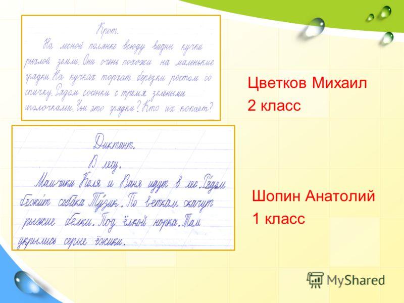 Цветков Михаил 2 класс Шопин Анатолий 1 класс
