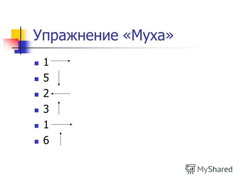 Упражнение «Муха» 1 5 2 3 1 6