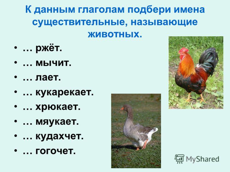 К данным глаголам подбери имена существительные, называющие животных. … ржёт. … мычит. … лает. … кукарекает. … хрюкает. … мяукает. … кудахчет. … гогочет.