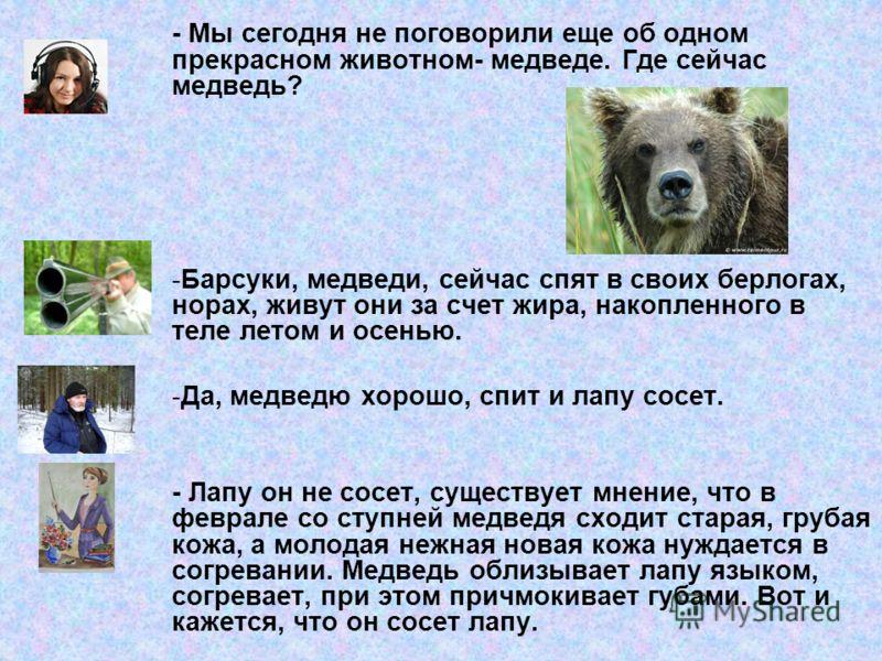 - Мы сегодня не поговорили еще об одном прекрасном животном- медведе. Где сейчас медведь? -Барсуки, медведи, сейчас спят в своих берлогах, норах, живут они за счет жира, накопленного в теле летом и осенью. -Да, медведю хорошо, спит и лапу сосет. - Ла