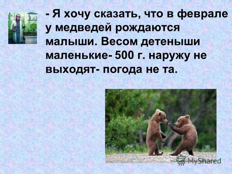 - Я хочу сказать, что в феврале у медведей рождаются малыши. Весом детеныши маленькие- 500 г. наружу не выходят- погода не та.